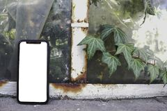 Phone in hand on the background of trees, park, garden. Layout for the application. Phone with a white screen. Black screen. Phone royalty free stock photography