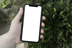 Phone in hand on the background of trees, park, garden. Layout for the application. Phone with a white screen. Black screen. Phone stock photo