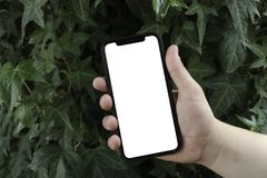 Phone in hand on the background of trees, park, garden. Layout for the application. Phone with a white screen. Black screen. Phone stock photos