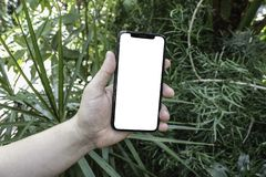 Phone in hand on the background of trees, park, garden. Layout for the application. Phone with a white screen. Black screen. Phone stock image