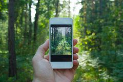 Phone in man& x27;s hand royalty free stock photo