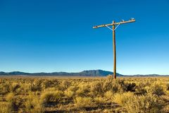 Phone Pole. Abandoned telephone pole in the middle of a high desert Stock Photo