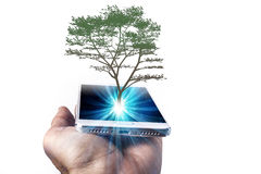 Phone And Tree Royalty Free Stock Images