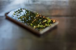 Phone on wooden table screen in focus background artistic royalty free stock images