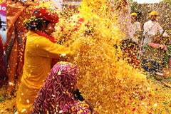 Phoolon Ki Holi : Holi with flowers Royalty Free Stock Photo