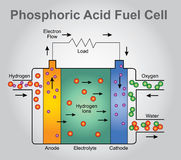 Phosphoric Acid fuel cell. Structure. Education technology info graphic vector Stock Image
