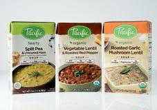 Photo éditoriale illustrative de soupe Pacifique à marque photos libres de droits