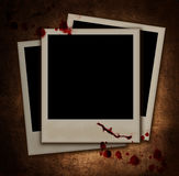 Photo Stock Images