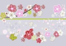 Photo abstraite d'art de fleurs de cerisier Image stock