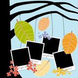 Photo album with photos hanging on autumn tree Royalty Free Stock Photography