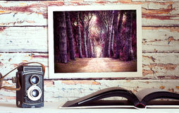 Photo album, photos on the wall. Royalty Free Stock Photos
