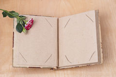 Photo album and roses Stock Image