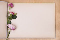 Photo album and roses. Open photo album on a table and three roses royalty free stock images