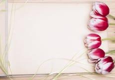 Photo album and tulips royalty free stock photos