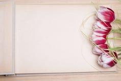 Photo album and tulips stock photo