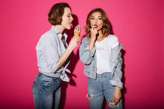 Amazing two women friends eating ice cream. Stock Photos