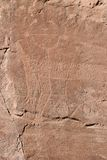 Photo of ancient petroglyphs Stock Photography