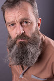 Photo of an angry grumpy old man looking very displeased. Male man with long beard on his face. Close up face . Royalty Free Stock Photos
