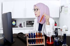 Asian muslim scientist works in the lab. Photo of Asian female muslim scientist working in the lab while using a computer and holding test tube Royalty Free Stock Photo