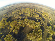 Photo of an autumn forest with a bird's eye view Stock Photos
