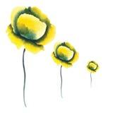 Photo avec la fleur trois jaune Images stock