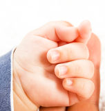 Photo of a babie's hand Stock Image