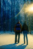 Photo from back of young couple in winter park royalty free stock photography
