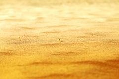 Beautiful texture of yellow sand Stock Images
