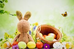 Photo background with bunny and Easter eggs. Ideal for Easter Photo Sessions stock image