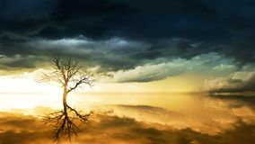 Photo of Bare Tree Under Cloudy Sky Royalty Free Stock Images