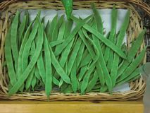 Basket of green beans stock images