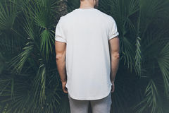 Photo Bearded Muscular Man Wearing White Blank t-shirt in summer time. Green huge palm Background. Back view. Horizontal Stock Photo