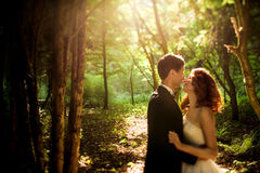 Photo of the beautiful couple in the park. Amazing photo of the beautiful couple in the park Royalty Free Stock Photography