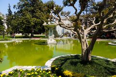 Dolmabahce Palace Garden stock image
