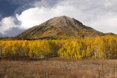 Photo of a beautiful fall season in Colorado Royalty Free Stock Image