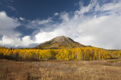 Photo of a beautiful fall season in Colorado Stock Image