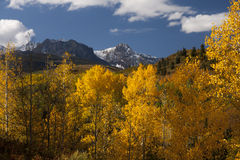 Photo of a beautiful fall season in Colorado with Stock Photography