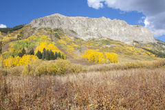 Photo of a beautiful fall season in Colorado Stock Images