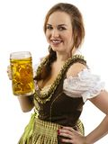 Beautiful Oktoberfest waitress holding beer. Photo of a beautiful female waitress wearing traditional dirndl and holding a beer steins over white background royalty free stock photo