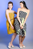 Photo of beautiful girls. Two young beautiful girls in elegant dresses stock images