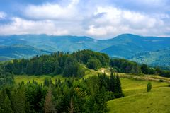 Photo of green forest and valley in Carpathian mountains Royalty Free Stock Images
