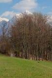 Dolomites mountains landscape Royalty Free Stock Images