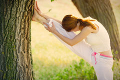Photo of beautiful young woman doing joga on the wonderful trees Stock Photography