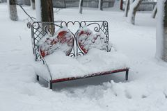 Bench in the winter park Stock Photos