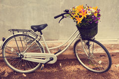 Photo of a bicycle with a basket full of field flowers. Cute bicycle with a basket full of field flowers near grey wall. Vintage toned Stock Photos