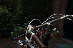 Bicycle in a garden Stock Photography