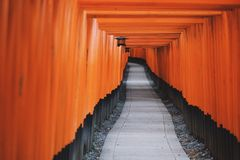 Photo of Black and Orange Hallway Royalty Free Stock Photo