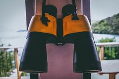 Photo of Black and Yellow Binoculars royalty free stock photo