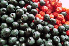 Photo of blueberries and raspberries royalty free stock images