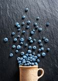 Photo of blueberry in clay cup. Blueberry explosion. Photo of blueberry in clay cup on black slate. Top view. High resolution product Stock Images